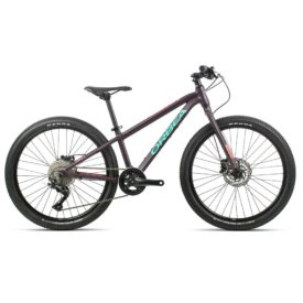 orbea mx 24 team disc 2020 lila rosa
